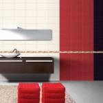 kırmızı beyaz siyah ince bordürlü banyo fayansları modelleri